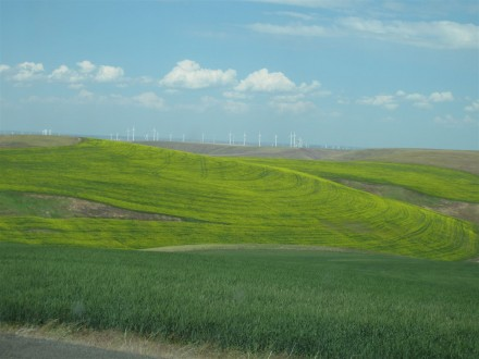 Palouse.Casi.C.Smith.WWAVChamberOfCommerce